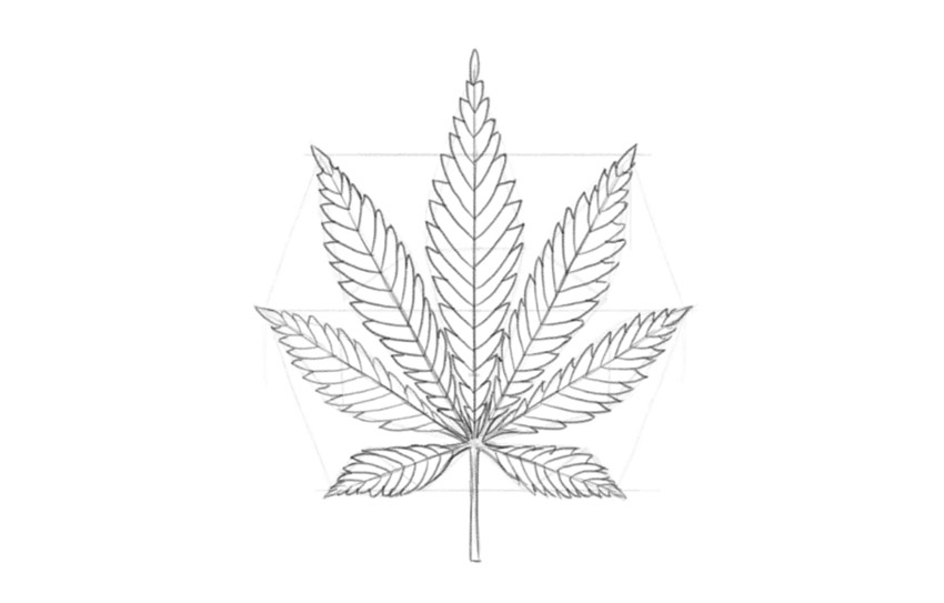 how to draw the weed leaf how to draw a pot leaf the how draw leaf weed to