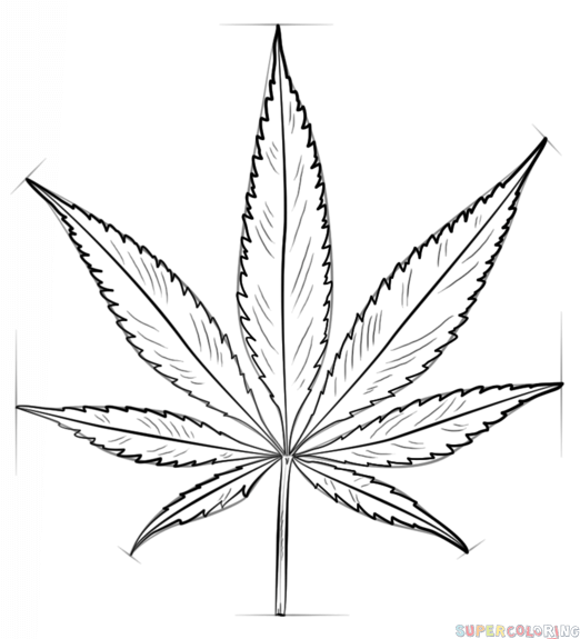 how to draw the weed leaf marijuana leaf drawing at getdrawings free download how weed to leaf the draw