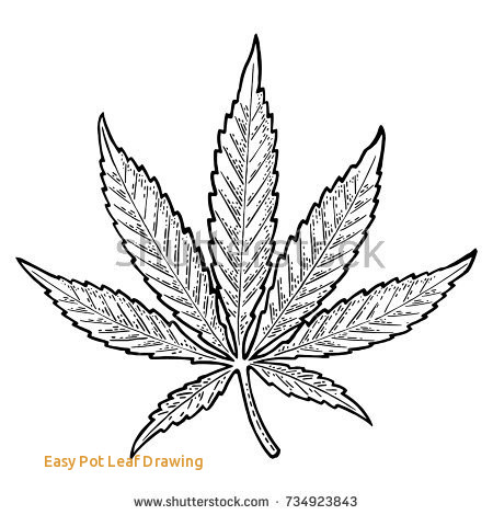 how to draw the weed leaf marijuana leaf sketch at paintingvalleycom explore weed to draw leaf how the