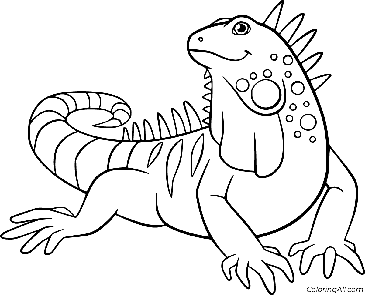 iguana coloring page iguana coloring pages to download and print for free iguana coloring page