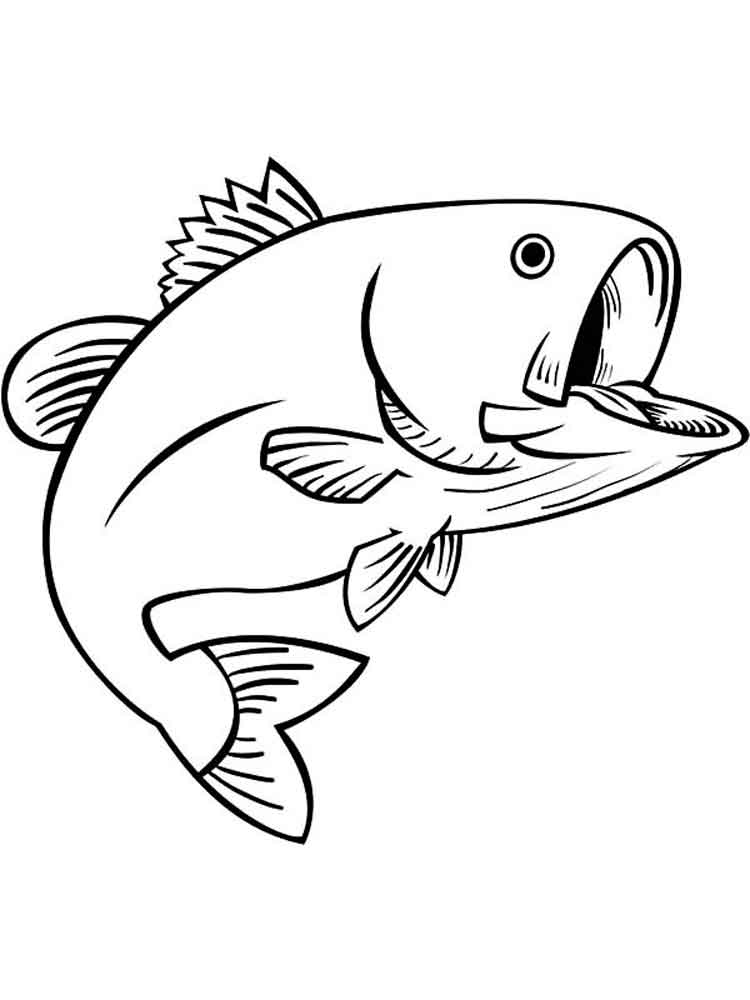 images of fish for colouring butterfly fish coloring pages at getcoloringscom free images for fish of colouring