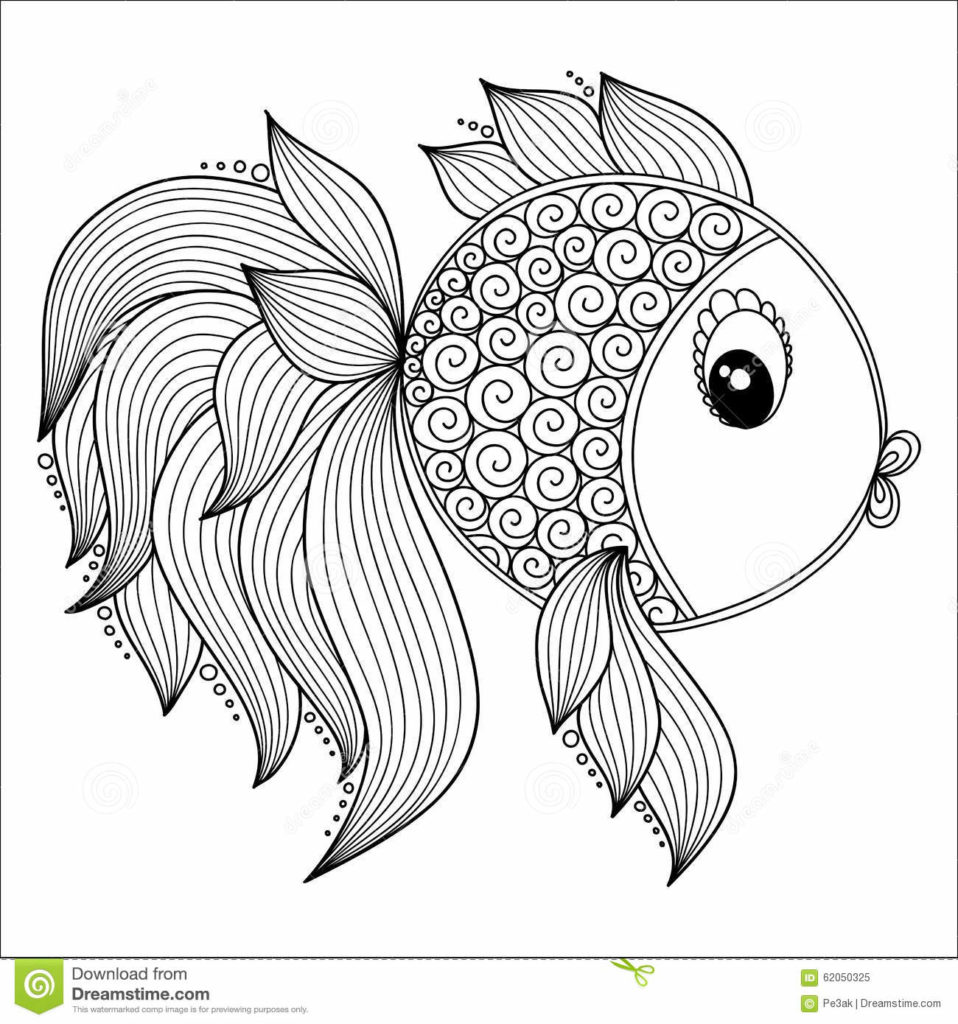 images of fish for colouring freshwater fish coloring pages at getcoloringscom free of fish for colouring images