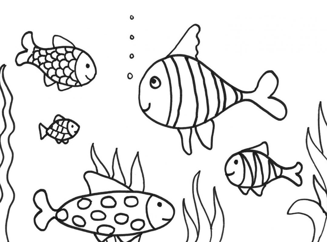 images of fish for colouring koi fish coloring download koi fish coloring for free 2019 images colouring for of fish