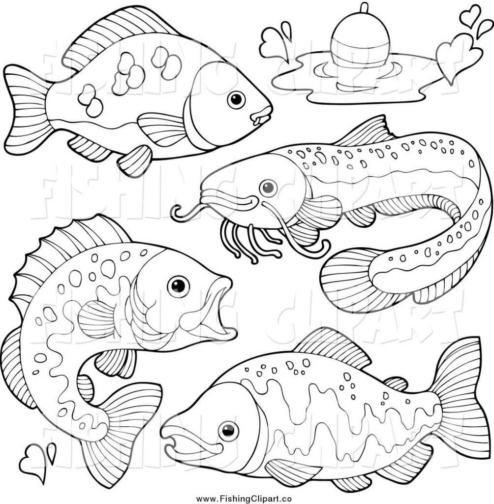 images of fish for colouring small fish coloring page free printable coloring pages for of colouring images fish