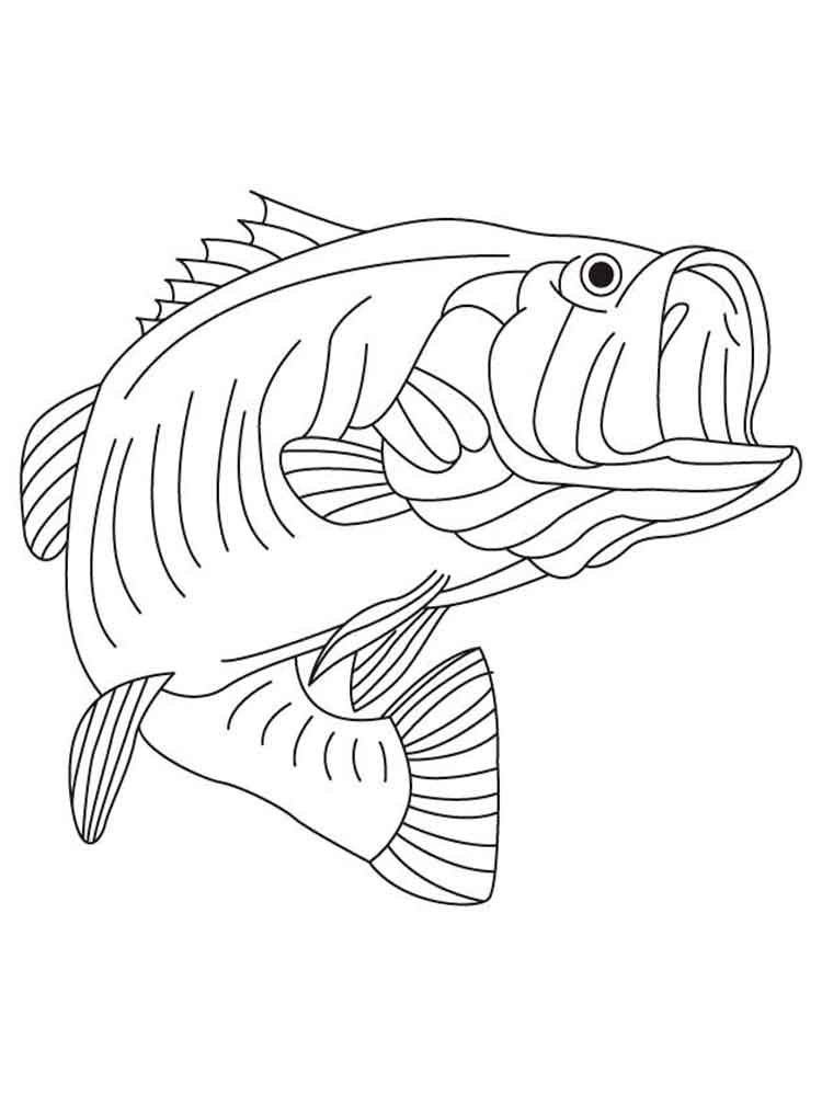 images of fish for colouring tuna fish coloring pages download and print tuna fish images fish for colouring of