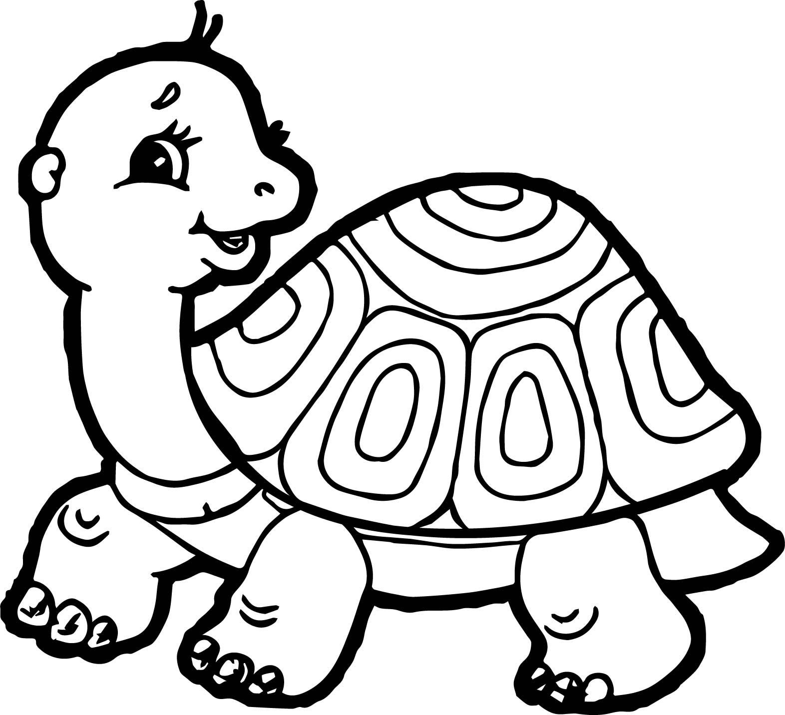 images of turtles to color detailed turtle coloring pages at getcoloringscom free to color of turtles images