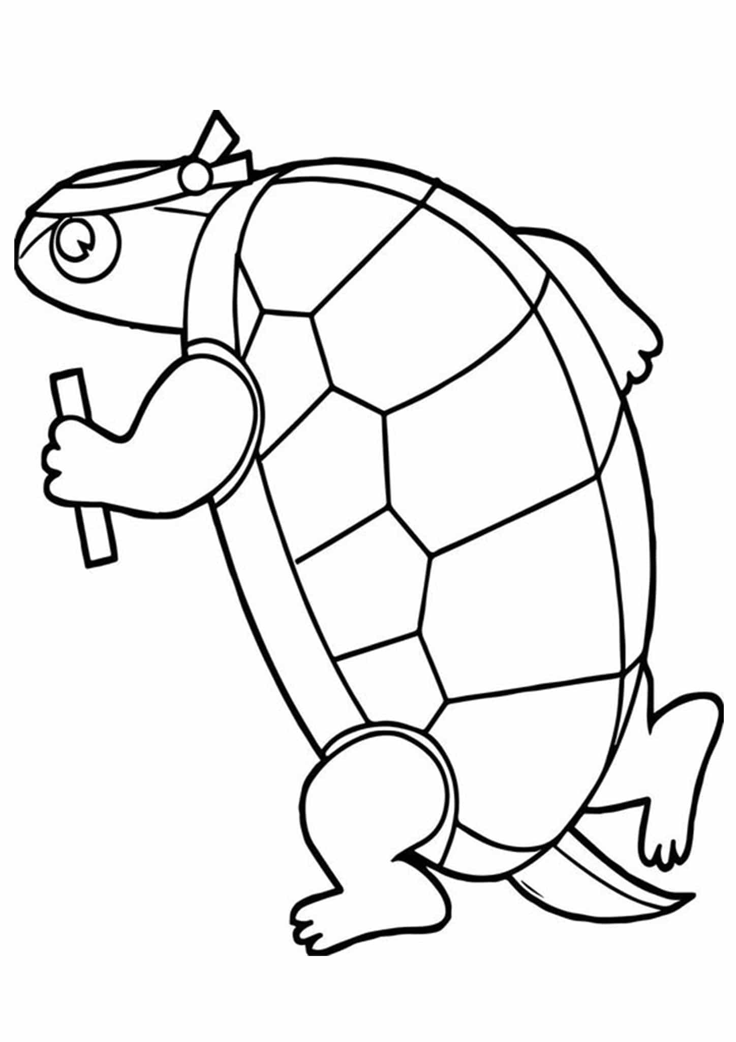 images of turtles to color detailed turtle coloring pages at getdrawings free download to color turtles of images