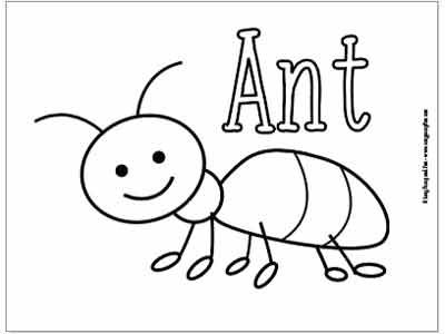 insects for coloring coloring insects for kids stock vector image of animals coloring for insects