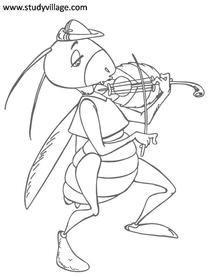 insects for coloring free insect coloring pages for adults printable to insects for coloring