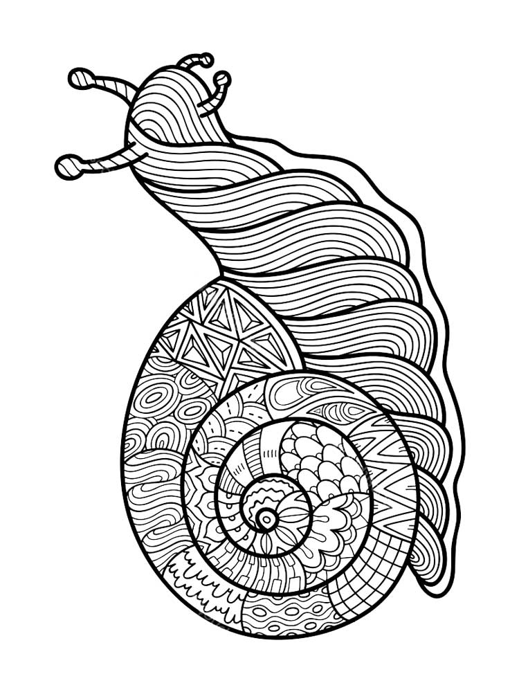insects for coloring insect coloring pages at getcoloringscom free printable coloring for insects