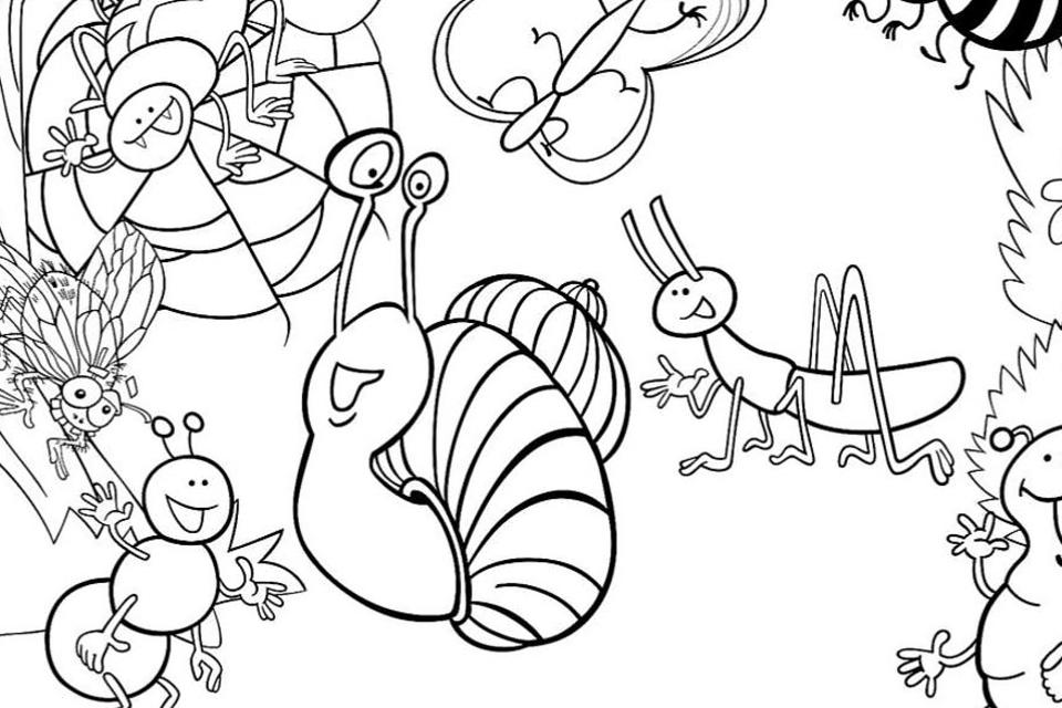 insects for coloring insects for coloring coloring for insects