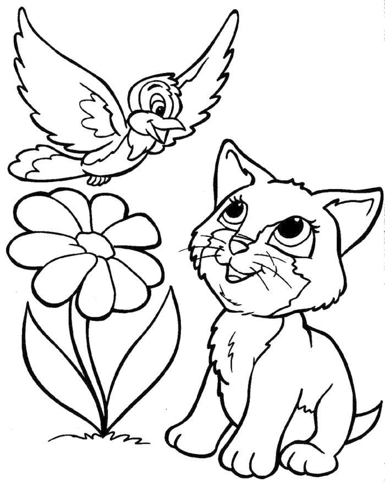 kids coloring pages kitten get this kitten coloring pages kids printable 3sda1 new coloring kitten kids pages