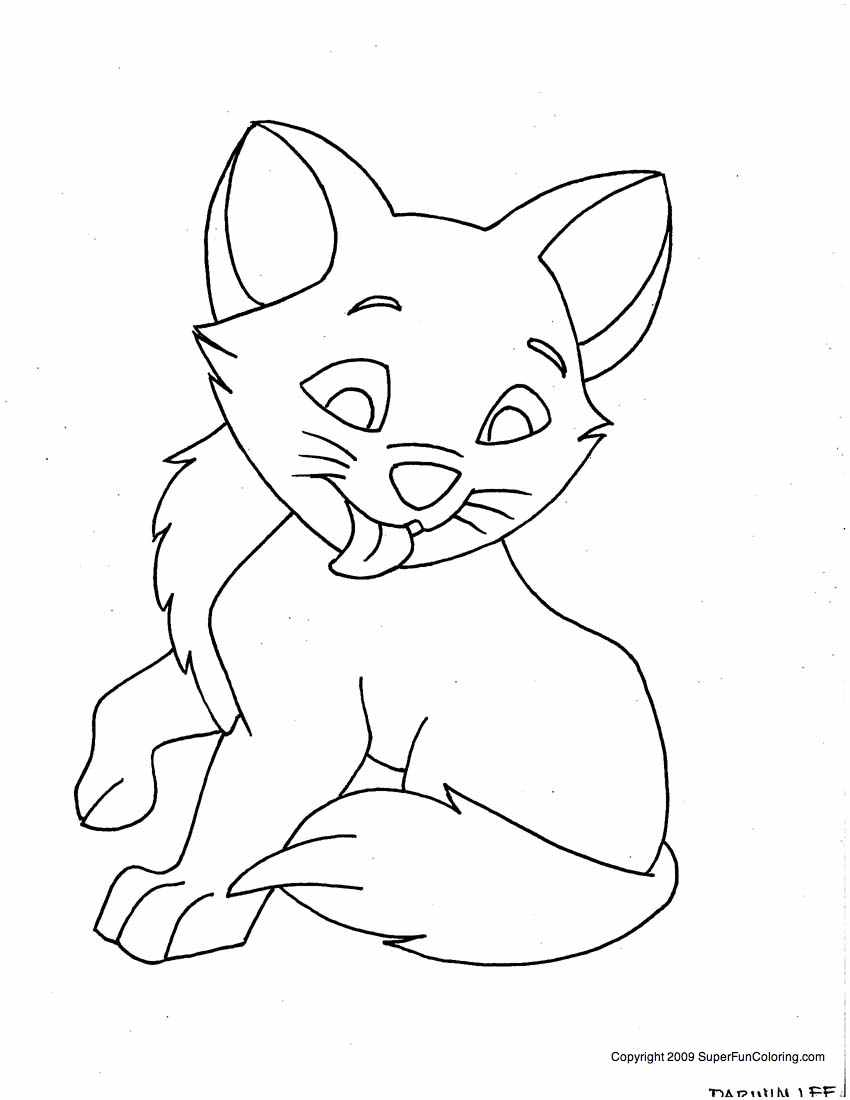 kids coloring pages kitten male kitten coloring pages for boys kids coloring pages pages kitten kids coloring