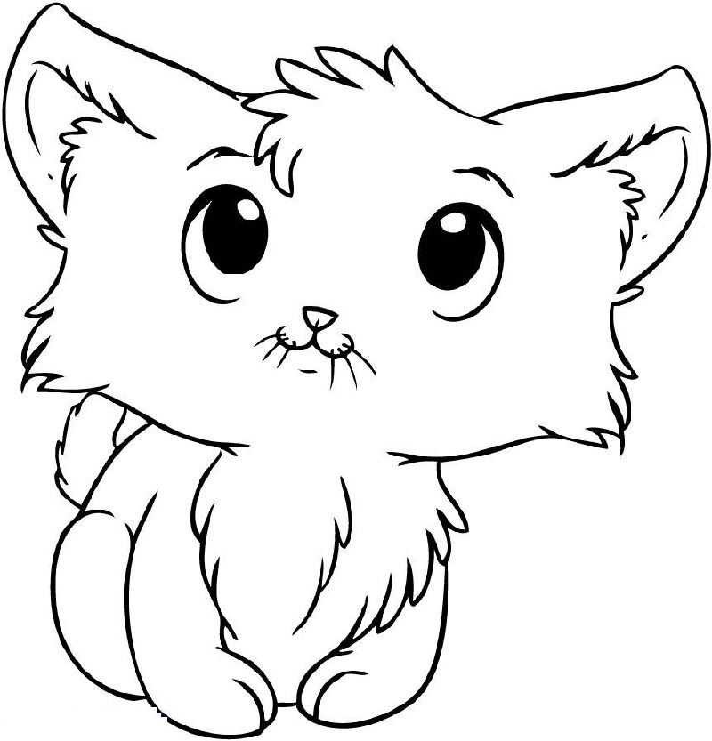 kitten coloring get this cat coloring pages for kids 7fg50 kitten coloring