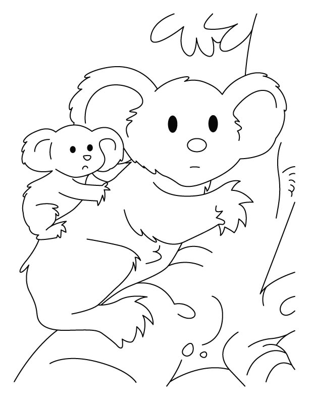 koala pictures to colour in clipart panda free clipart images to pictures in colour koala