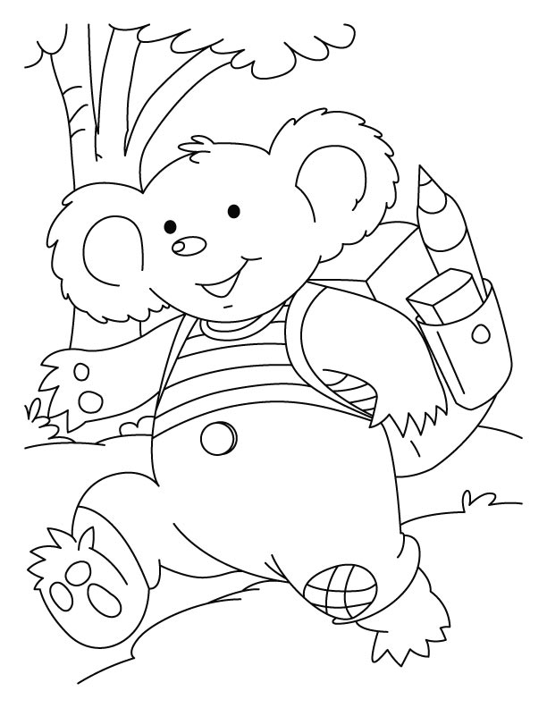 koala pictures to colour in koala colouring page in pictures koala colour to