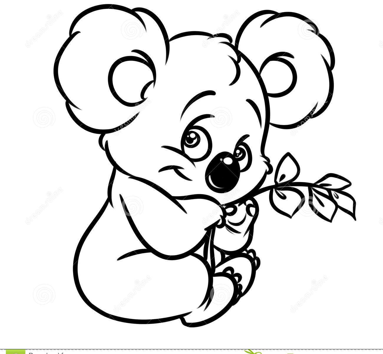 koala pictures to colour in koala line drawing at getdrawings free download colour to pictures koala in