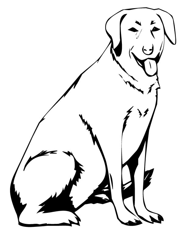 labrador dog coloring pages chocolate lab coloring pages at getcoloringscom free pages dog labrador coloring