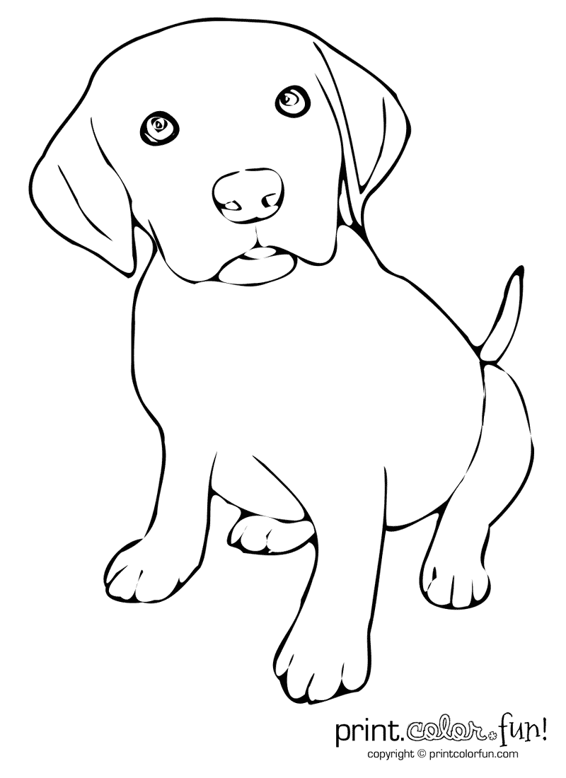 labrador dog coloring pages cute puppy print color fun coloring dog pages labrador