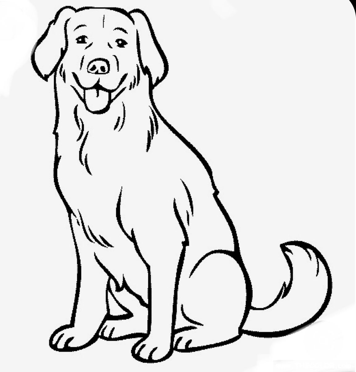 labrador dog coloring pages pin by kim lauderdale on bullet journaling shot thru the labrador dog pages coloring