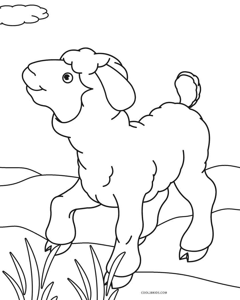 lamb pictures to colour cute sheep line art free clip art to pictures lamb colour