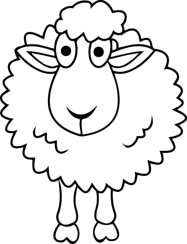 lamb pictures to colour sheep drawing for kids at getdrawings free download colour to pictures lamb