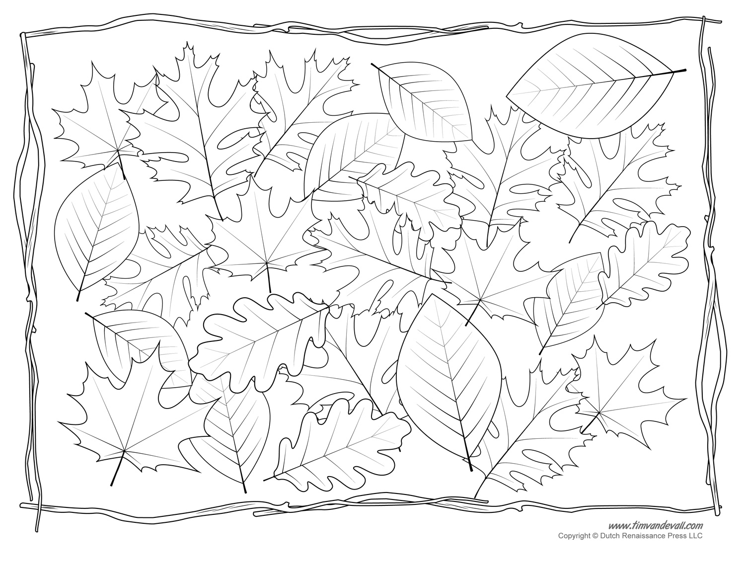 leaves coloring images leaf coloring pages coloringpages1001com coloring leaves images
