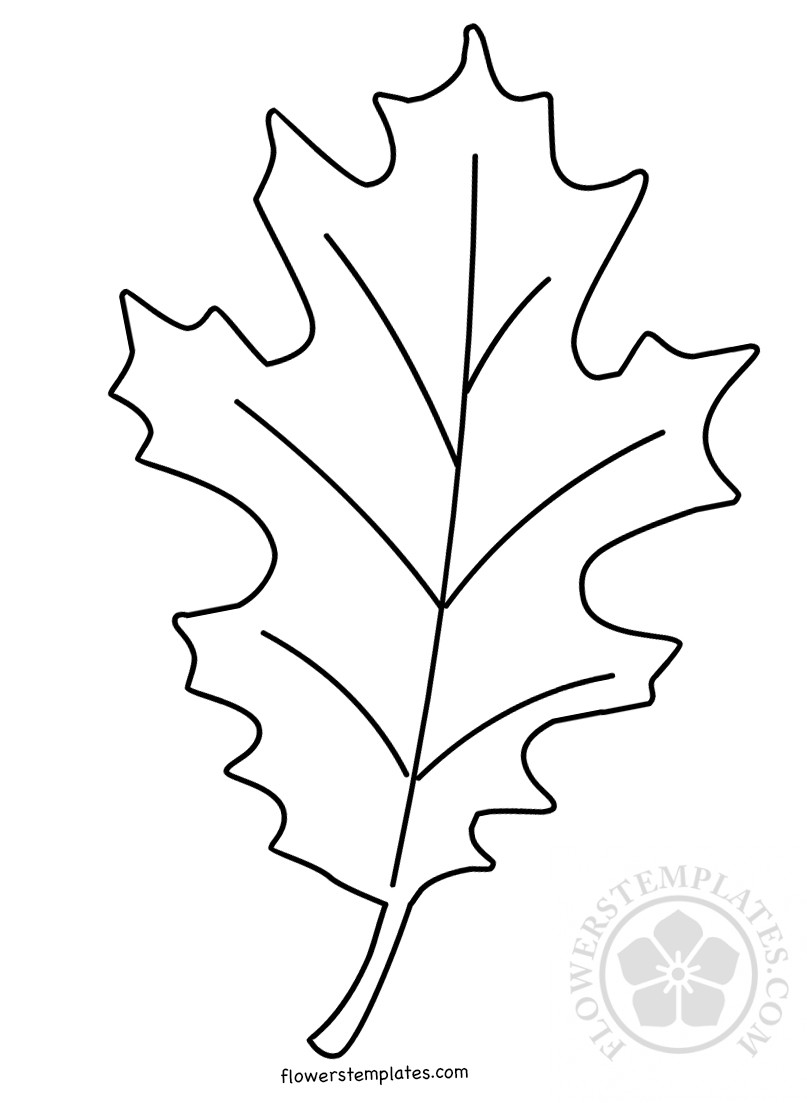 leaves to colour in 8 jungle coloring pages pdf png free premium templates leaves in colour to