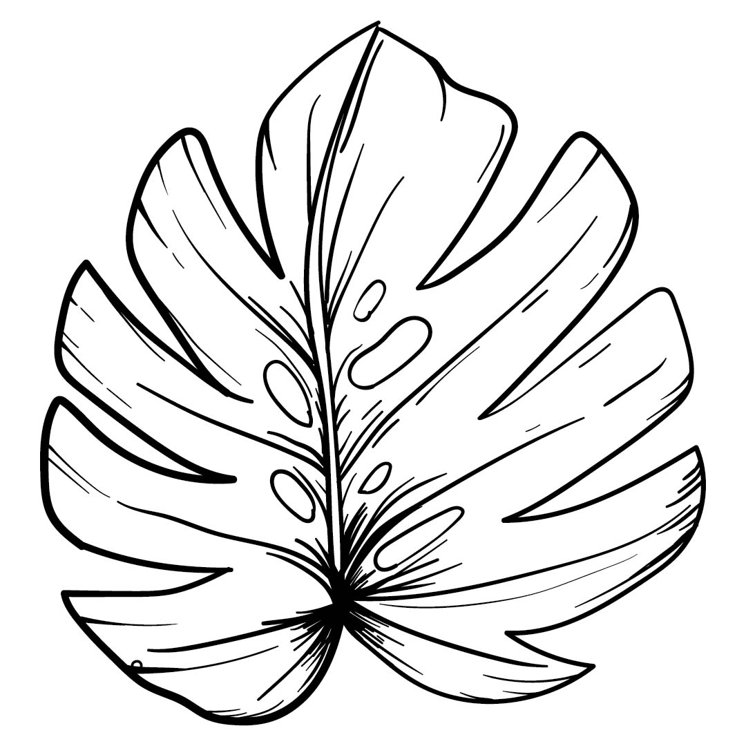 leaves to colour in free printable leaf coloring pages for kids cool2bkids colour leaves in to