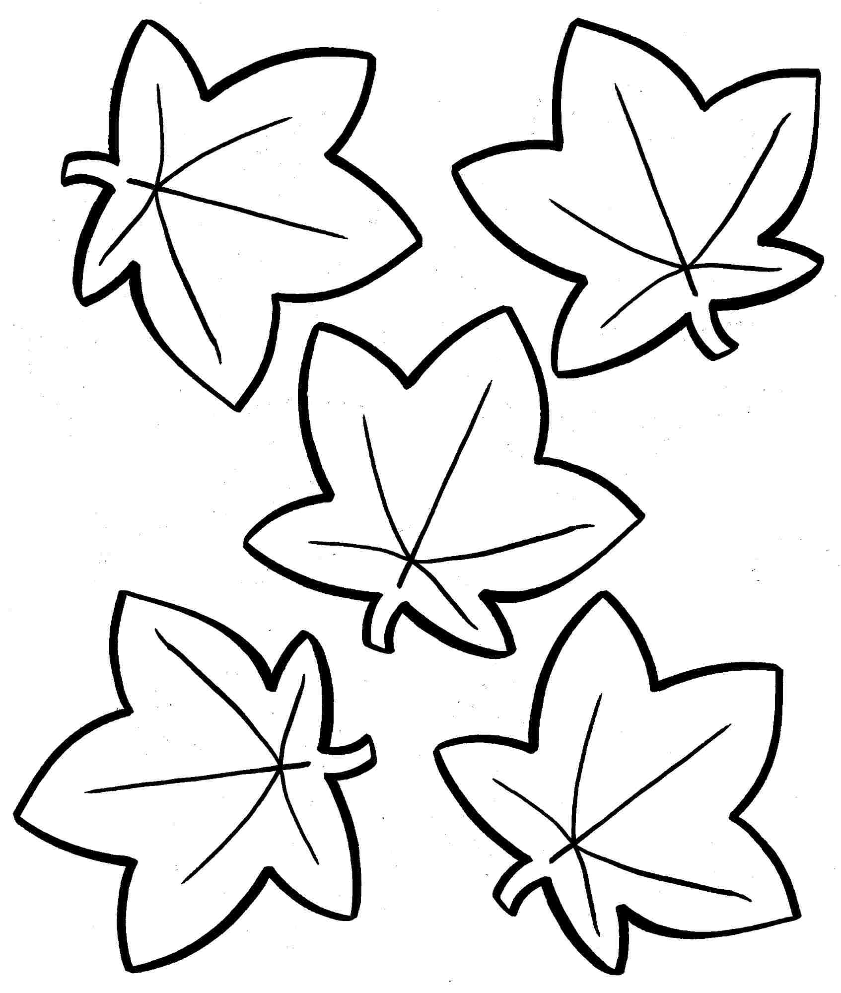leaves to colour in free printable leaf coloring pages for kids cool2bkids to leaves colour in