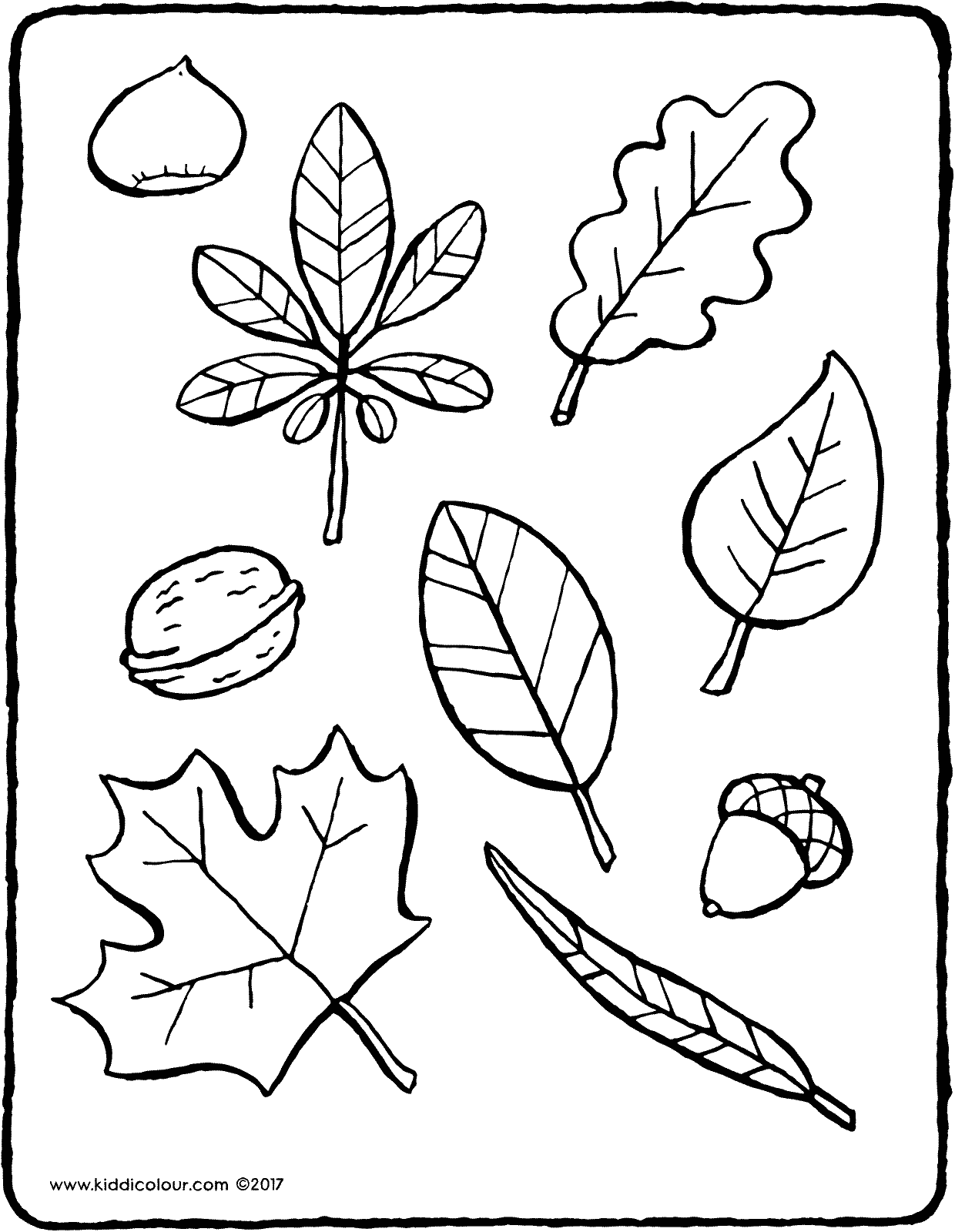 leaves to colour in free printable leaf coloring pages for kids cool2bkids to leaves in colour