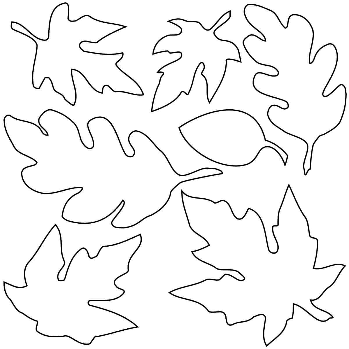 leaves to colour in large leaf template coloring home in to colour leaves