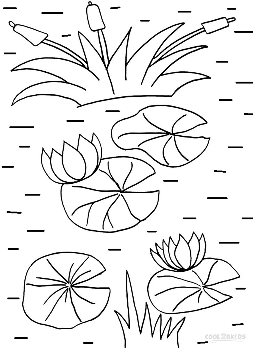 lily pad coloring sheet pond coloring pages lily pad flower free printable lily coloring sheet pad