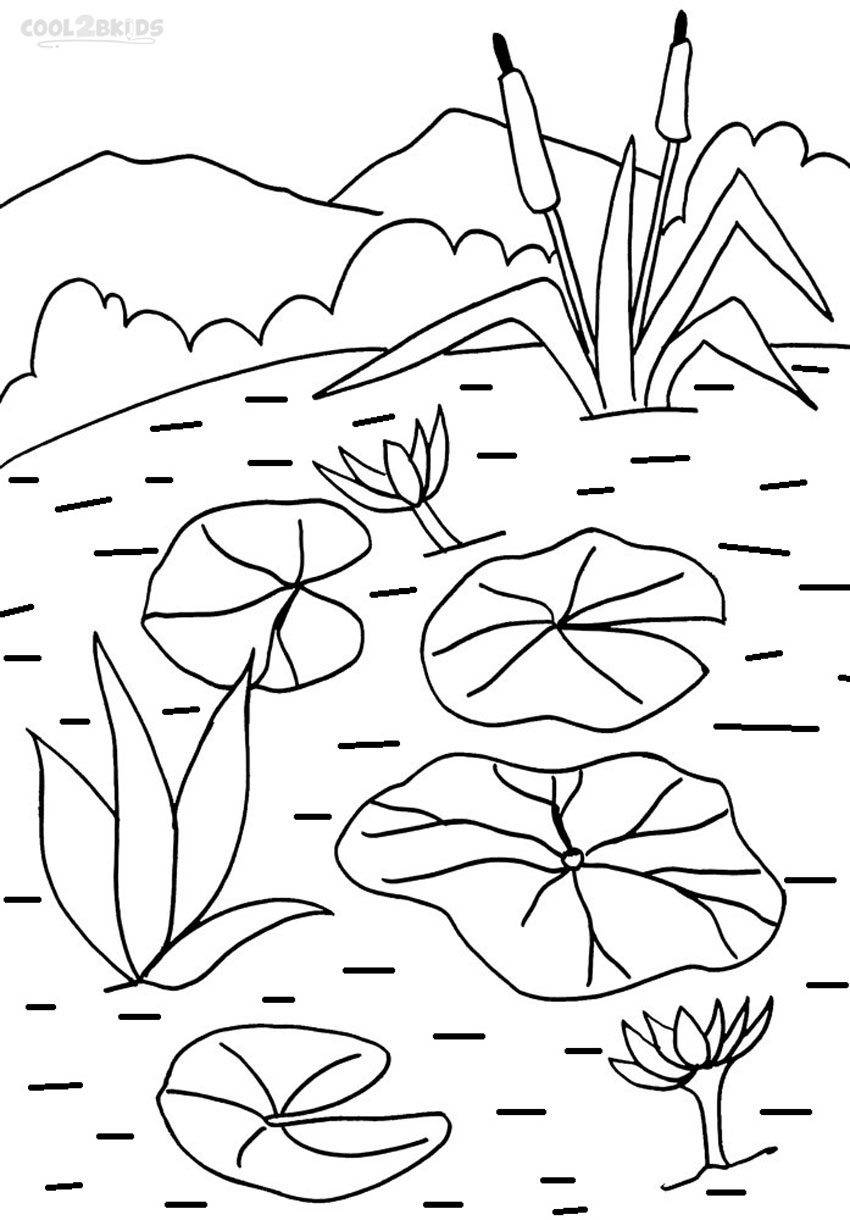 lily pad coloring sheet printable lily pad coloring pages for kids cool2bkids coloring lily sheet pad