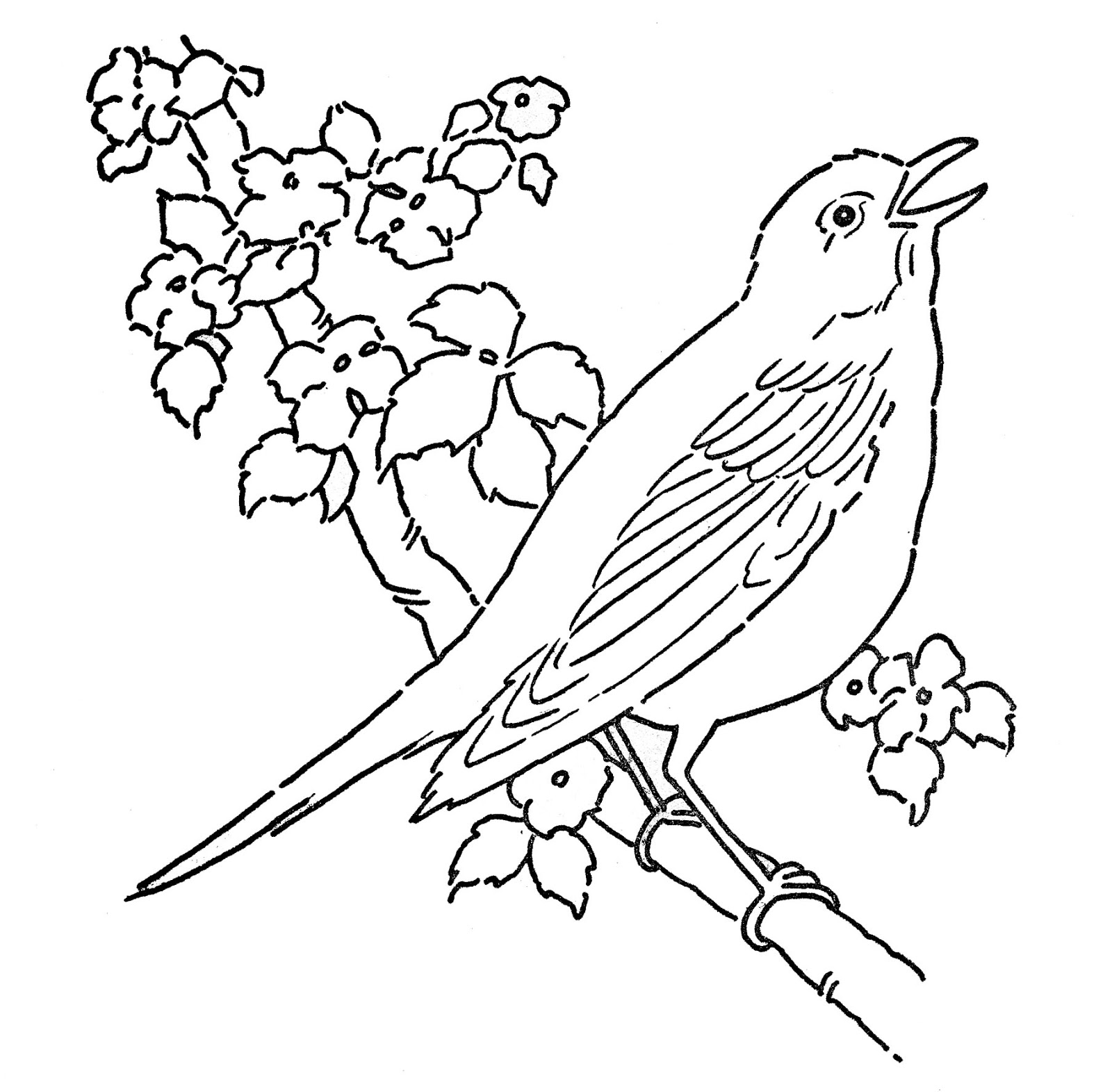 line art coloring pages free super hero line art for colouring line art pages coloring