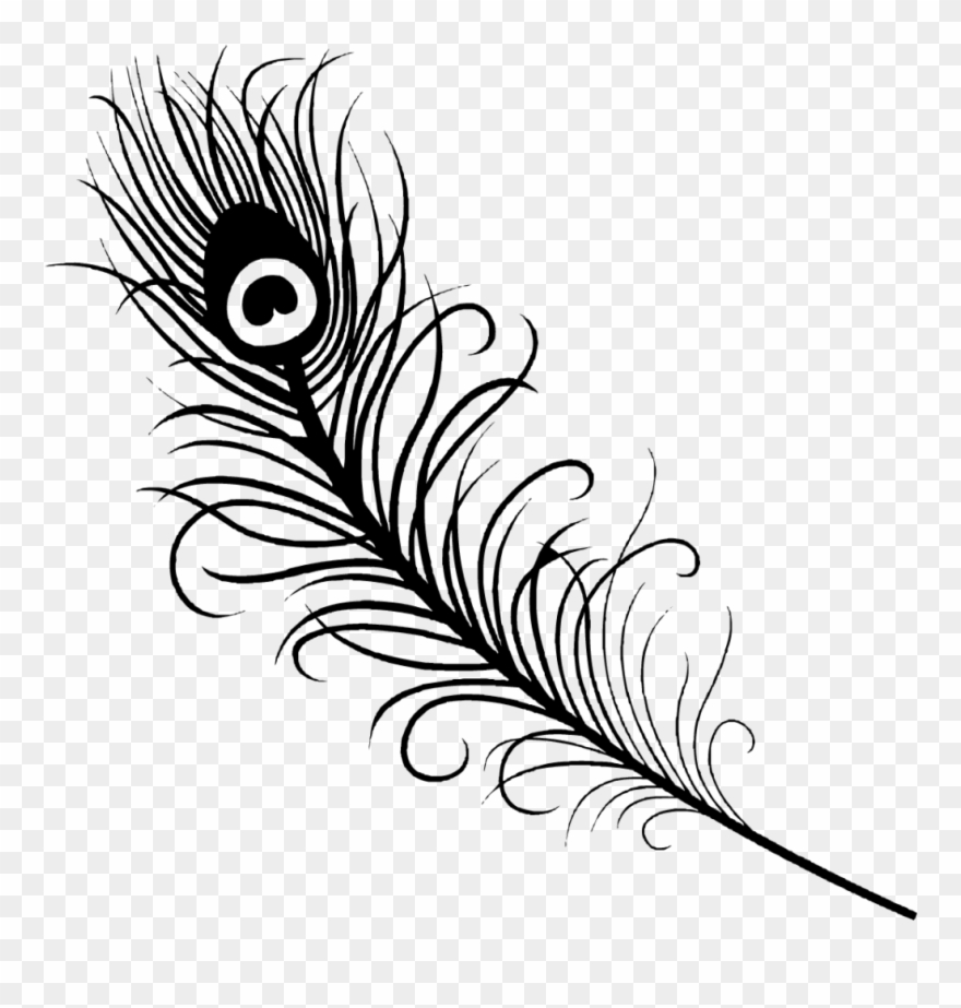 line drawing of peacock easy drawing of peacock at getdrawings free download line drawing of peacock