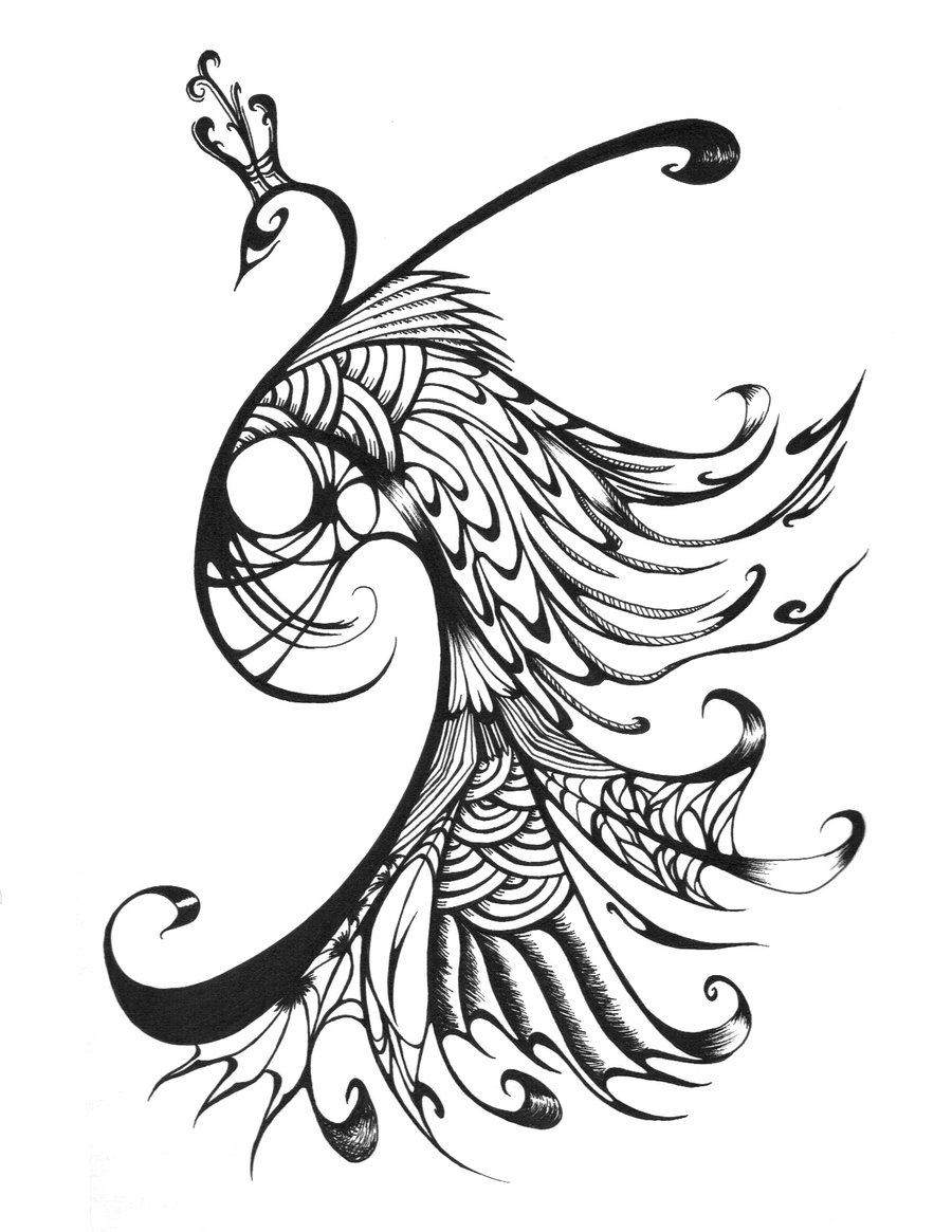line drawing of peacock peacock coloring pages for kids of peacock drawing line