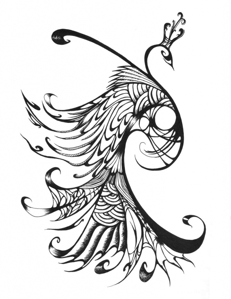 line drawing of peacock peacock line drawing free download on clipartmag of peacock drawing line