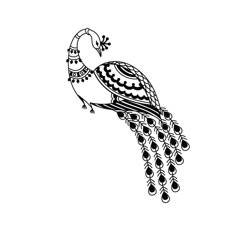 line drawing of peacock peacock line drawing viewing gallery clipart best drawing peacock of line
