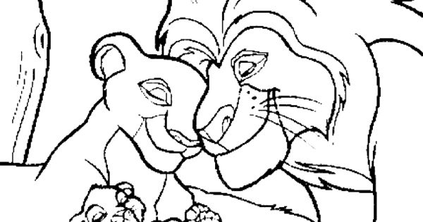 lion family coloring pages safari lions stock photo image 33835440 lion pages coloring lion family