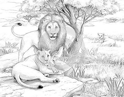 lion family coloring pages the lion king coloring pages free printable family coloring lion pages