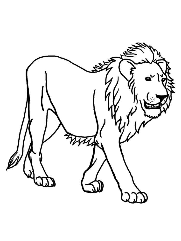lion printable fun with lion coloring pages lion printable