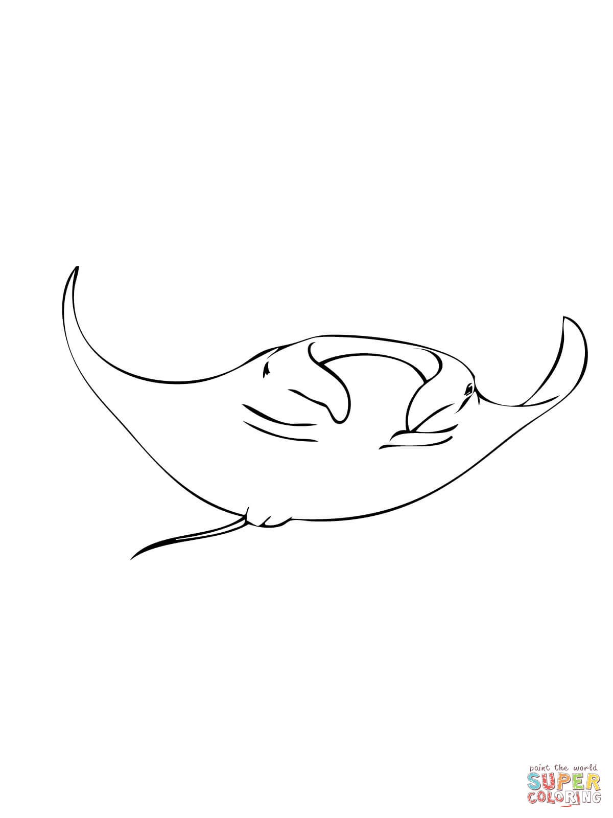 manta ray outline manta ray outline coloring pages manta ray outline ray manta outline