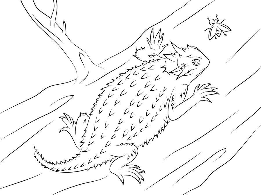 marvel lizard coloring pages marvel rhino coloring pages coloring pages marvel lizard pages coloring