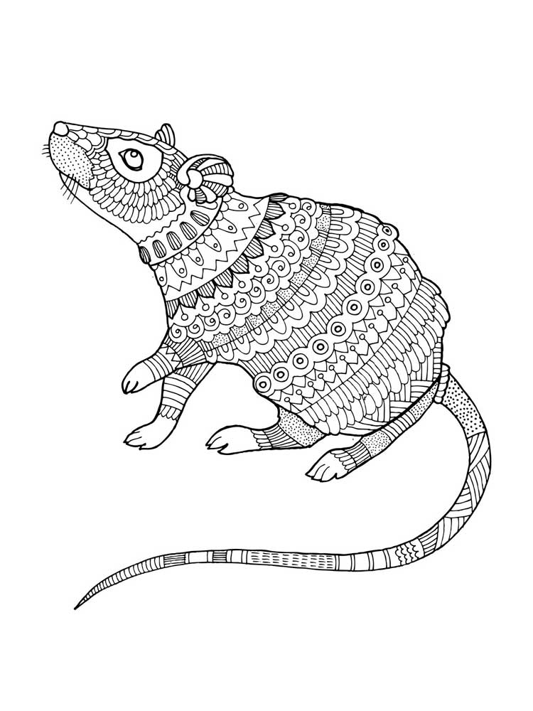 mice coloring pages free mouse coloring pages for adults printable to pages coloring mice
