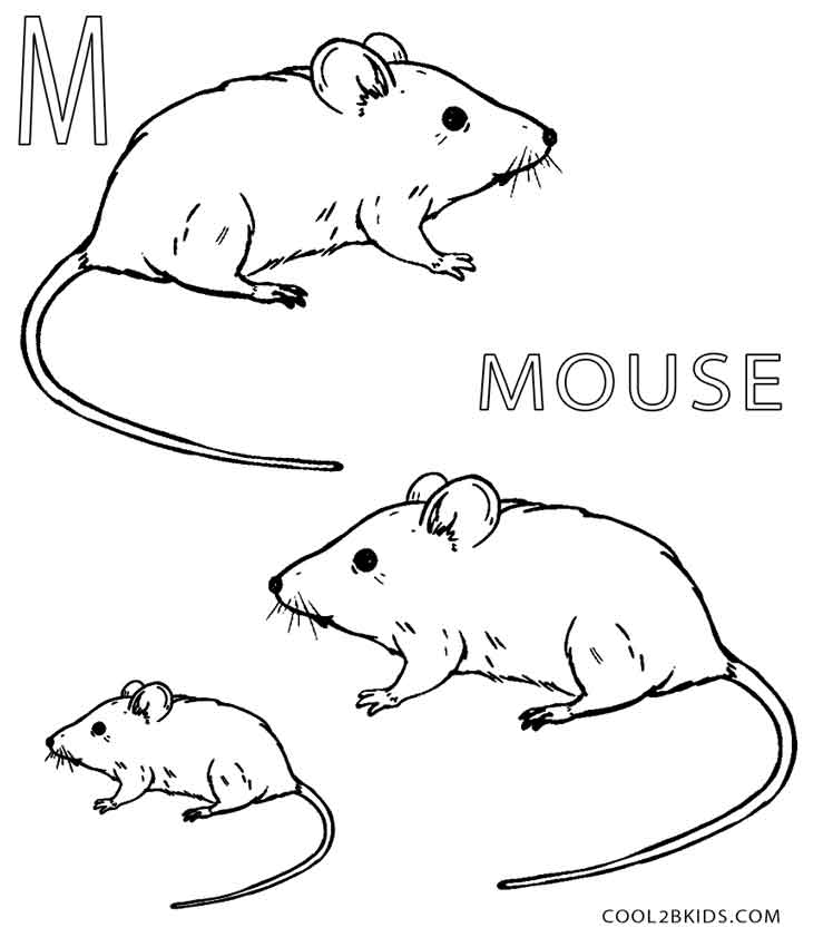 mice coloring pages printable mouse coloring pages for kids cool2bkids coloring mice pages