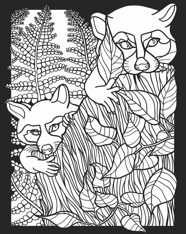 nocturnal animals coloring sheets childhood education nocturnal animals coloring pages free sheets animals coloring nocturnal