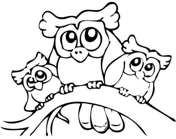 nocturnal animals coloring sheets nocturnal animal coloring pages animals sheets nocturnal coloring