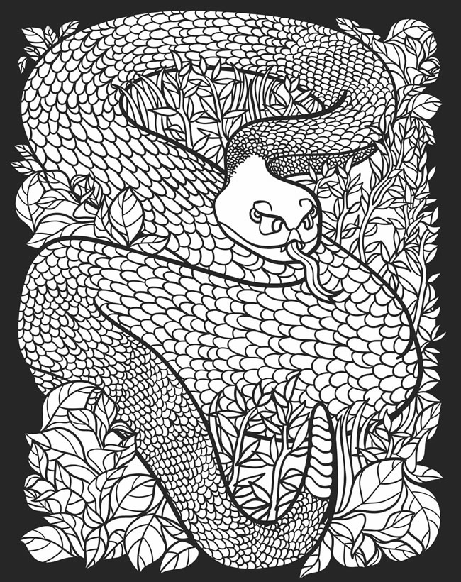 nocturnal animals colouring free coloring pages of nocturnal animals coloring page blog nocturnal colouring animals