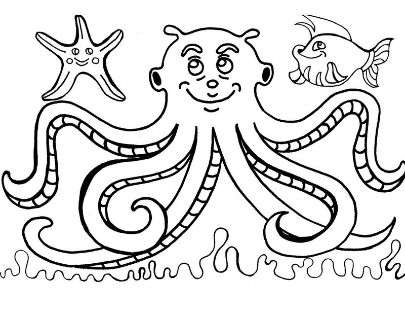 octopus for coloring octopus coloring pages for kids coloring sheets coloring octopus for
